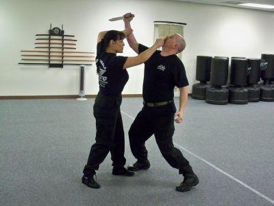 police self defense techniques pdf